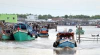 Cà Mau: Chủ tàu cá khai thác thủy sản trái phép bị đề nghị phạt 1,3 tỷ đồng