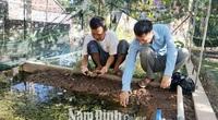 Nam Định: Vùng đất chiêm trũng dân đổi đời nhờ nuôi con đặc sản cực sợ thuốc trừ sâu, bắt bán đắt tiền