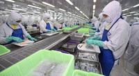 EVFTA đang tạo ra sức bật mới cho ngành thủy sản Việt Nam