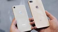iPhone 8 plus đẹp và chất, giá hiện tại bao nhiêu?