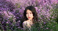 Hóa nàng thơ trong vườn hoa thạch thảo tím lịm tim chưa từng có ở Đà thành