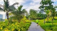 Ngắm bình minh đẹp như tranh vẽ tại khu đô thị xanh Ecopark
