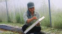 Thanh Hóa: Ấn tượng với vị nữ giám đốc trẻ tiên phong làm rau củ quả an toàn