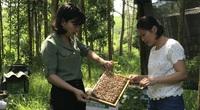 Dạy nghề cho lao động nông thôn: Nghịch lý có tiền mà không tiêu được