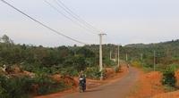 Công ty Điện lực Đắk Nông: Nâng cao chất lượng cung ứng điện và dịch vụ khách hàng