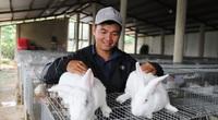 Bỏ lương 40 triệu, trai Lâm Đồng về quê trồng đồng cỏ xanh, nuôi thỏ trắng có thu được tiền tỷ không?