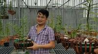 Bỏ chuỗi cửa hàng Viettel lương tháng 50 triệu, 8X tỉnh Lâm Đồng về trồng giàn phong lan đột biến trị giá 30 tỷ đồng