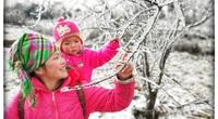 Lào Cai: Lạnh -3 độ C, Y Tý ngày tuyết rơi như chiếc tủ lạnh khổng lồ, đẹp như trời Âu