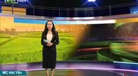 Bản tin Thời sự Dân Việt 15/1: Báo NTNN/Dân Việt và một năm tăng trưởng giữa mùa dịch Covid-19