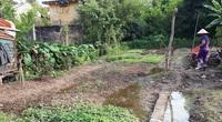 Làm thế nào chuyển đổi đất nông nghiệp xen kẹt thành đất ở?