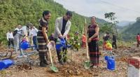 Trung tâm Truyền thông TN&MT, Bộ TN&MT thực hiện chương trình trồng cây góp quỹ một tỷ cây xanh cho Việt Nam