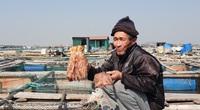 Quảng Ninh: Cả chục tấn cá song, cá giò chết bất thường hàng loạt, nông dân Quảng Yên xót xa lo mất Tết
