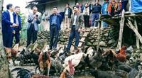 Hội Nông dân Nghệ An: Nhận cờ thi đua xuất sắc trong công tác Hội và phong trào nông dân
