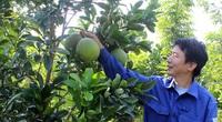 Hướng về cơ sở hỗ trợ nông dân vượt khó làm giàu