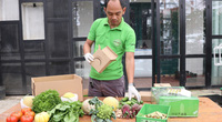 Quà Tết Tân Sửu 2021: Giỏ quà Tết toàn cà chua, cải bắp, súp lơ, dưa chuột,...lại được khách thích ra mặt