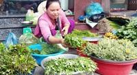 Hậu Giang: Dân chui vô ruộng mía vặt thứ rau dại gì mà đem ra chợ bán người mua tới tấp?