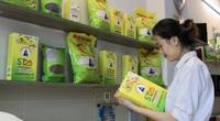 Tết đến nơi, có doanh nghiệp mua hàng tấn gạo ST25 làm quà tặng nhân viên, đối tác