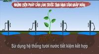 Clip: Những lưu ý khi chăm sóc cây sầu riêng mùa hạn mặn