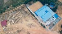 Phú Thọ: Chủ đầu tư xây dựng nhà máy rộng hàng nghìn m2 trên đất rừng sản xuất nhận sai