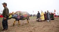 Covid-19: Dừng lễ hội Tịch điền Đọi Sơn 2021
