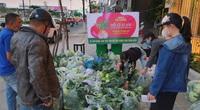 """Người dân Đà Nẵng giải cứu nông sản Hải Dương ùn ứ vì Covid-19 """"không phải vì giá rẻ"""""""