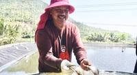 Nuôi loài cá đặc sản, nghe tên thôi đã thèm, kéo lưới bắt hàng tấn, một ông nông dân Đà Nẵng thu tiền tỷ