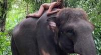 Người mẫu 22 tuổi phải xin lỗi sau khi chụp ảnh khỏa thân cùng với loài voi đang trên bờ vực tuyệt chủng