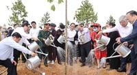 Sớm có Nghị định riêng về bảo vệ rừng, chế biến và thương mại lâm sản