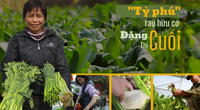 """Tỷ phú nông dân trồng rau hữu cơ kiểu độc lạ, khiến thiên hạ """"lác mắt"""", có giống rau tên nghe phát phì cười"""