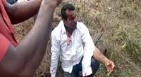Clip: Người đàn ông giết con báo hoa mai bằng tay không để bảo vệ vợ và con gái ở Ấn Độ