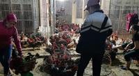 Giá gia cầm hôm nay 26/2: Cập nhật giá các loại gà, vịt mới nhất tại 3 miền, vịt thịt khan hàng
