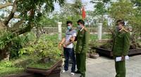 TT-Huế: Thêm đối tượng trộm hàng loạt cây mai cảnh sa lưới