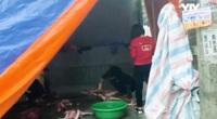 Hà Nội: Buông lỏng công tác quản lý, thu mua lợn chết, lợn bệnh để tiêu thụ chỉ bị phạt 750.000 đồng?