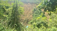 Đà Nẵng: Xe chở keo mất phanh lật xuống vực đè chết nữ công nhân, tài xế nguy kịch