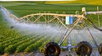 Điều kiện thuê đất nông nghiệp theo Luật mới