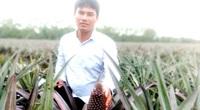 Long An: Trồng cây đầy gai, trái chi chít mắt, ông nông dân 8X thu tiền tỷ mỗi năm