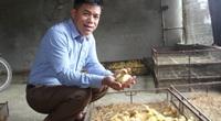 Hưng Yên: Nông dân giàu, nông dân khá giúp nông dân nghèo vượt khó vươn lên