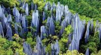 Lạc vào mê cung rừng đá 270 triệu năm tuổi rộng tới... 420 km2