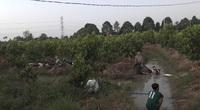 Video: Hàng trăm 'quái xế' tháo chạy, lao xe xuống kênh bỏ trốn khi bị vây bắt