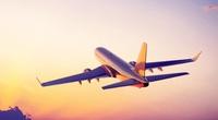 Máy bay phải bay vòng 20 phút trên trời để chờ... đuổi chó