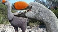Bí ẩn về loài chim đi bộ lớn nhất thế giới từng tồn tại nặng bằng một con bò