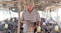 """Vì sao tỉnh Đồng Nai quyết định """"buông tay"""", ngừng hỗ trợ vaccine với người nuôi gia cầm?"""
