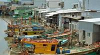 Một tập đoàn nổi tiếng ở Việt Nam muốn đầu tư thành phố hải sản quy mô 500ha ở tỉnh Cà Mau