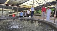 Đại trang trại cá quý tộc trên Cổng Trời mới được Chủ tịch Hội Nông dân Việt Nam đến thăm có gì đặc biệt?