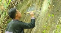 Người dân tộc Mông: Tạo ra mật ngọt từ những hốc đá trên núi cao