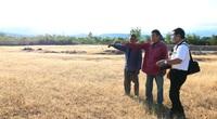 Ninh Thuận: Dân khổ vì dự án chăn nuôi bò cao sản sau 5 năm vẫn nằm trên giấy