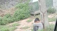 Người đàn ông xích cổ con trai 10 tuổi vào cột điện bêu ven đường