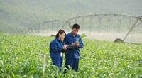 """Bò sữa ở Việt Nam: """"Hậu trường"""" quy trình chăn nuôi cầu kỳ và tỉ mỉ đáng ngạc nhiên"""