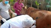 Chuyện lạ ở Long An: Công an viên kiêm… thú y cơ sở