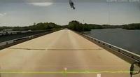 Đang lái xe, tài xế bỗng hoảng hồn khi thấy một chú cá bay thẳng vào kính xe
